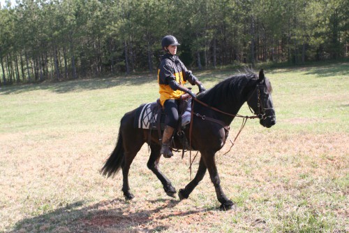 trail-ride_20100327_051