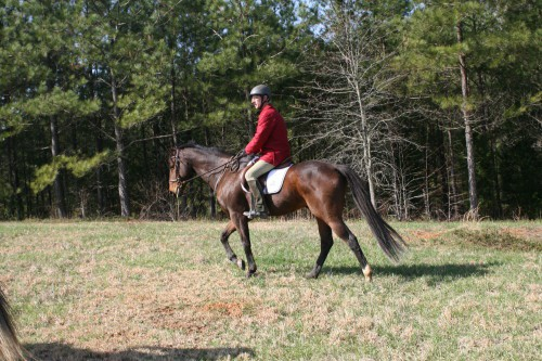 trail-ride_20100327_052