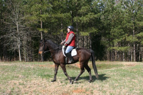 trail-ride_20100327_053