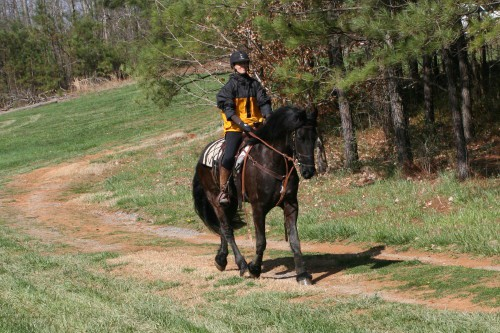 trail-ride_20100327_068