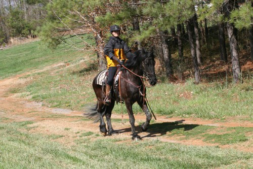 trail-ride_20100327_070