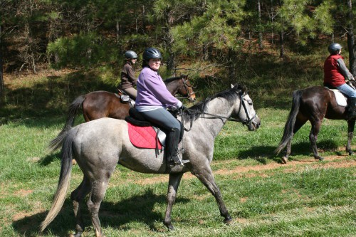 trail-ride_20100327_075