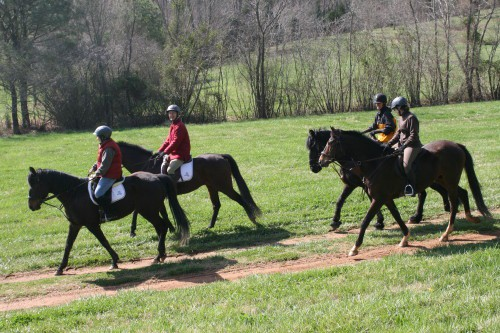 trail-ride_20100327_085