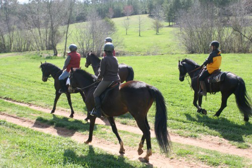trail-ride_20100327_086