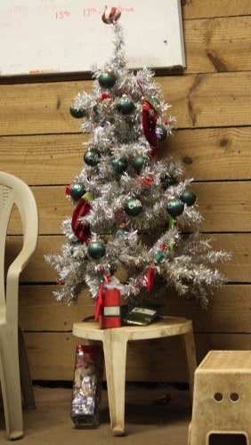 Thoroughbred\'s Christmas Tree