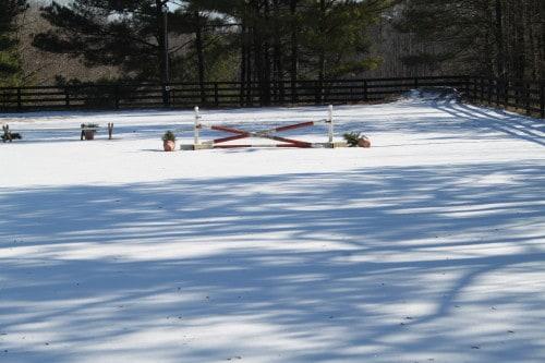 snow_20100110_002