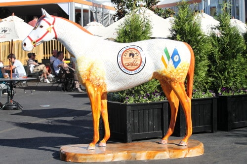 Another Painted Horse - Barry\'s Favorite