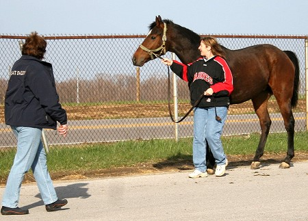 Maybe Satisfied is picked up at the track in Kentucky.