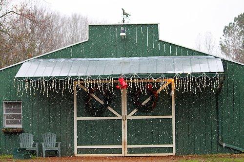 Christmas at Bits & Bytes Farm