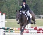 Snake Proof eventing with Morgan