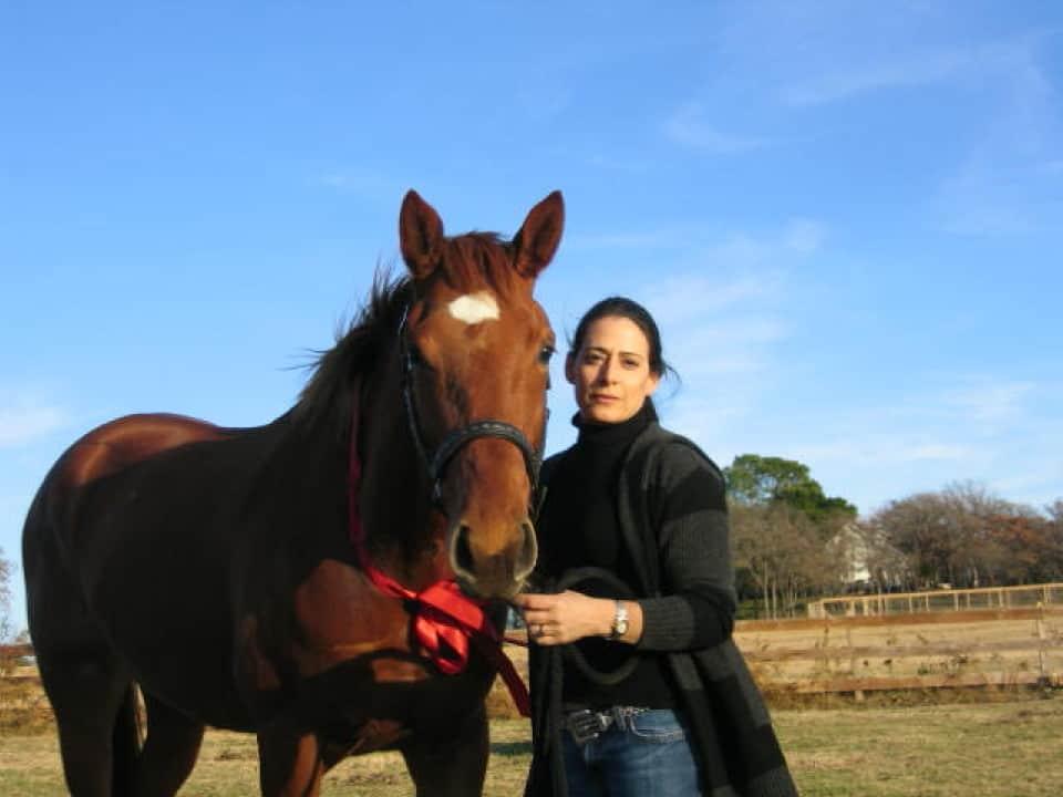 Thoroughbred Horse for sale - Wyafinder