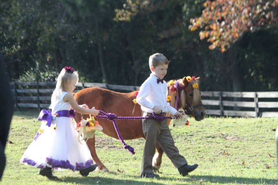A Wedding at Bits & Bytes Farm with a mini horse flower gir.