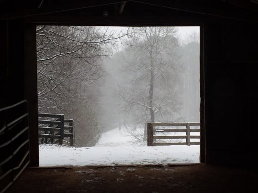 My favorite view from the barn.