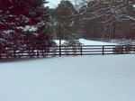 The riding arena is silent in the snow. horse
