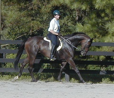 Elizabeth riding Captain Arias in 2001