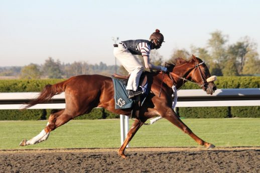Exercise rider at the track galloping a Thoroughbred