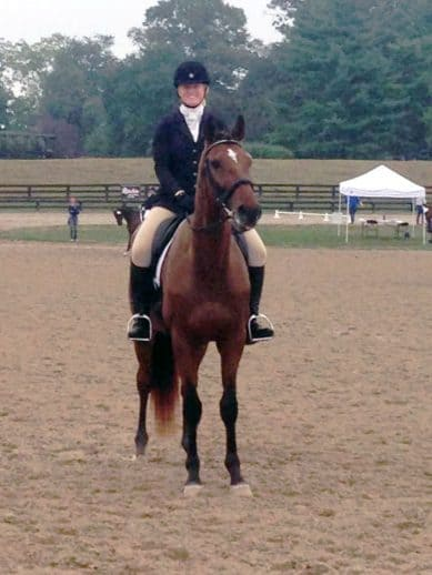 Former Thoroughbred race horse Alphanumeric in his dressage class