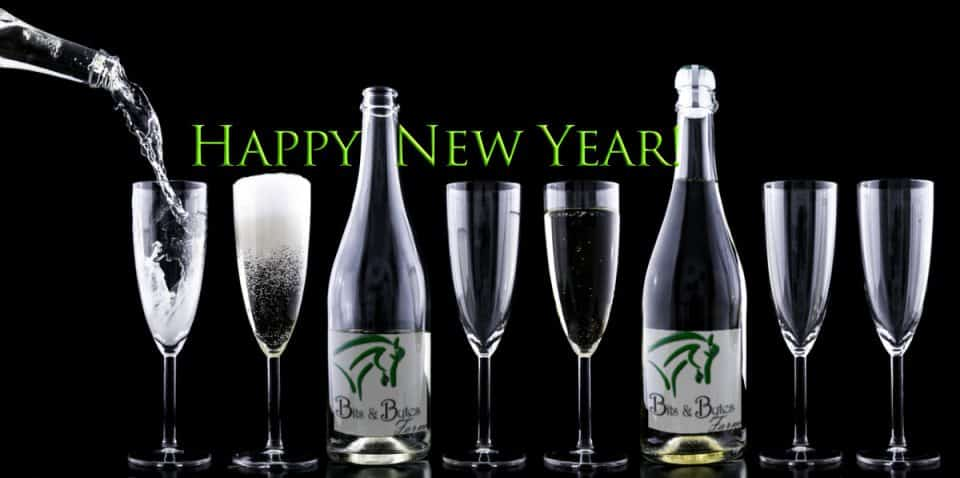 Happy New Year from Bits & Bytes Farm