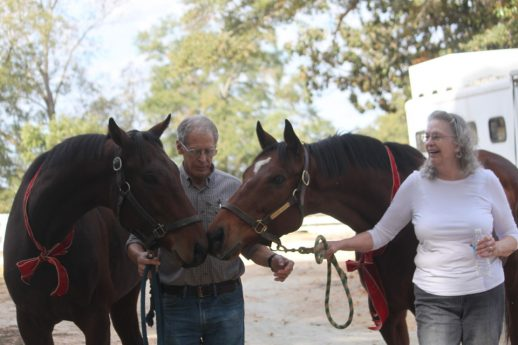 Whirlwind & Kitten's Warrior with Dave and Liz Pettinger