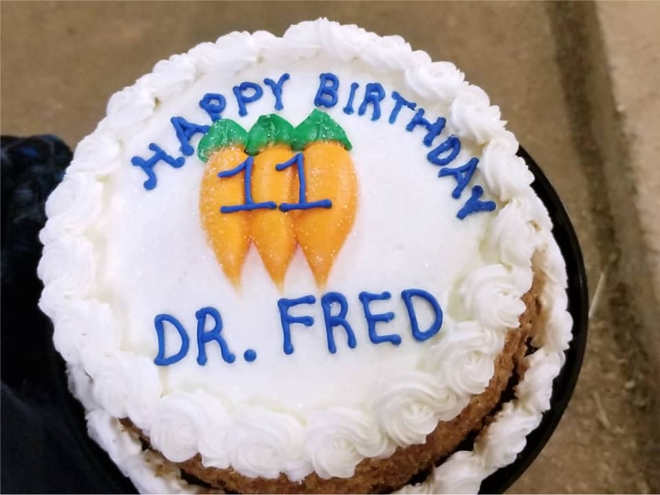 Happy Birthday Dr. Fredd OTTB