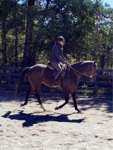 Swear is in training at Bits & Bytes Farm in Canton, GA