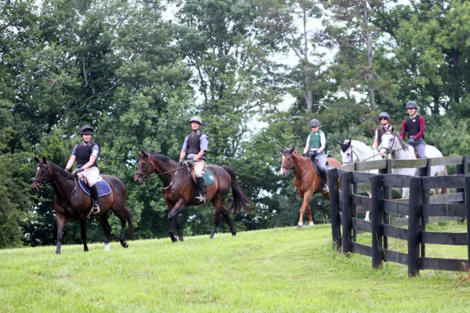 Six off-the-track-Thoroughbreds from Bits & Bytes Farm go x-country schooling.