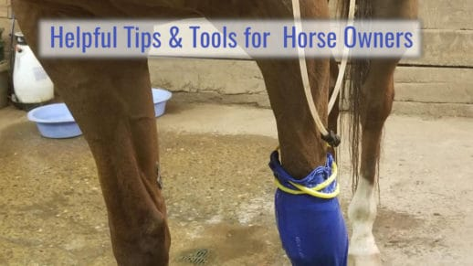 Helpful Tips & Tools for Horse Owners