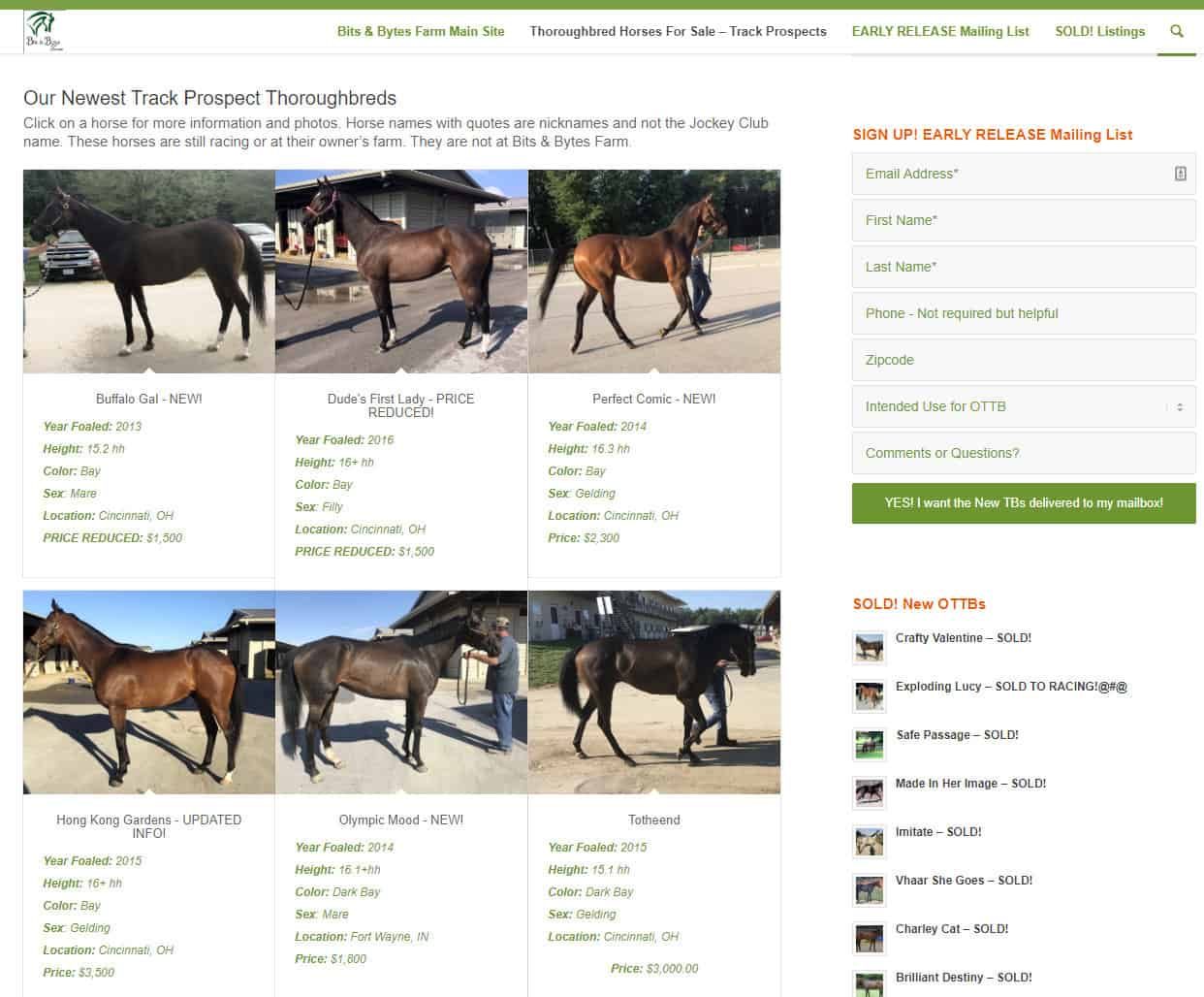 Thoroughbred Horses For Sale - October 1, 2019