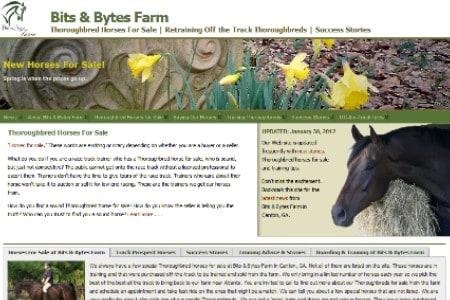 Bits & Bytes Farm Old Website