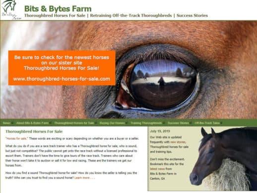Bits & Bytes Farm Website 2019