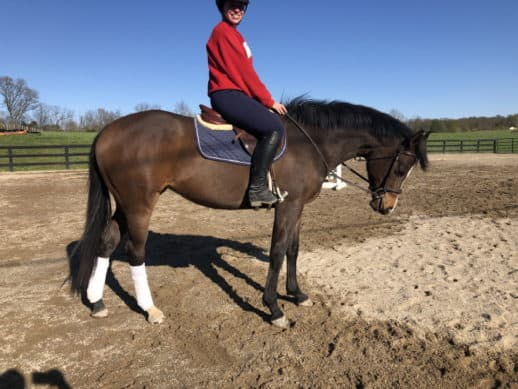 Fred's Baby Doll - Thoroughbred horse for sale